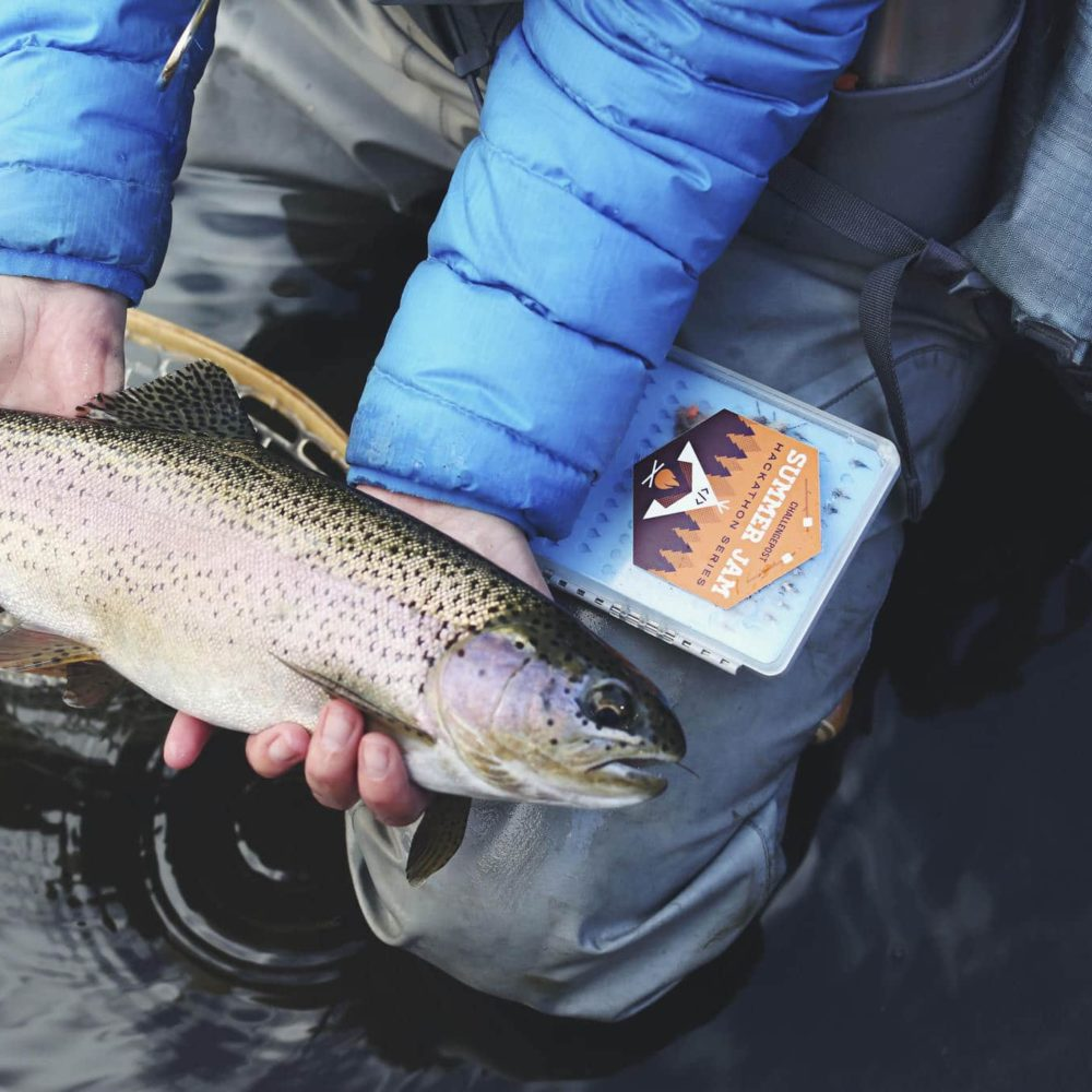 OposicionesTecnico inspeccion pesca